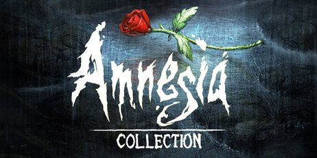 Ключ Amnesia Collection